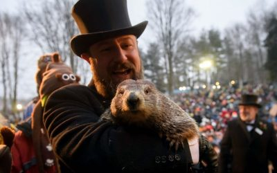 PETA calls for Punxsutawney Phil to retire, be replaced with AI robot for Groundhog Day | FOX 5 New York